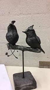 vogeltjestwee