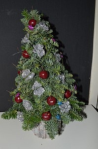 kerstboom incl. lichtjes € 25.00